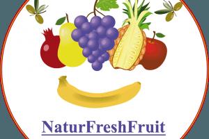 yMeraki estudio creativo - Logo NaturFreshFruit fondo blanco